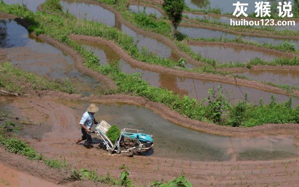中国55%的家庭储蓄为零,中国人为什么这么穷?